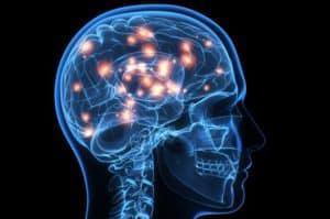 """brain activity"""